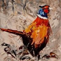 A Pheasant in full Colour